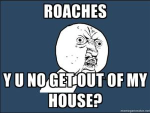 roaches_everywhere_by_sparks_fly13-d4gb2mx